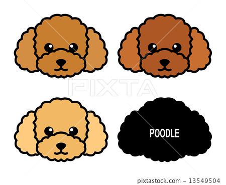 Dog Poodle illustration 13549504