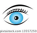 icon, eye, blue 13557250
