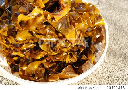 Raw seaweed 13561858