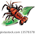 海鲜 对虾 斑节虾 13576378