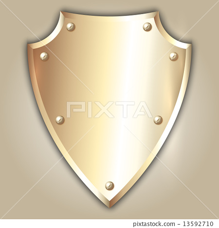 Vector abstract illustration of stainless steel shield 13592710