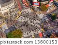 crossing tokyo shibuya 13600153