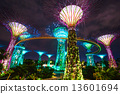 SINGAPORE - MARCH 19: Night view of The Supertree Grove at Garde 13601694