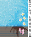 vector, vectors, pool 13646680