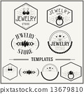 Vintage insignias and logotypes set. 13679810