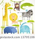 animals, zebra, giraffe 13705106