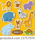 Set of various cute animals, vector stickers of safari animals 13757970