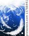 밤하늘에 흩 날리는 깃털 13766441