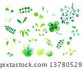 녹색 13780529