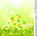 culture, clover, symbol 13785625