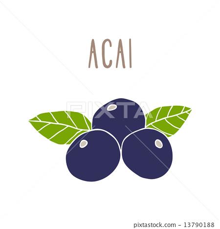 Acai berries superfood. 13790188