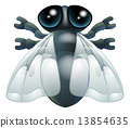 Cartoon fly bug 13854635