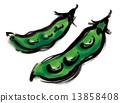 녹색, 흰색 배경, 재료 13858408