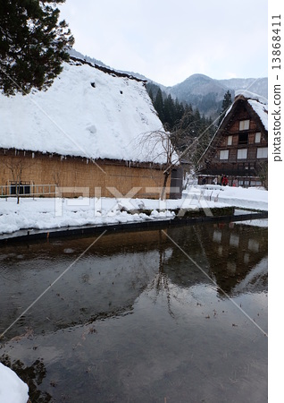 Winter rice field 13868411