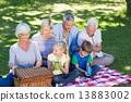 picnic, family, happy 13883002