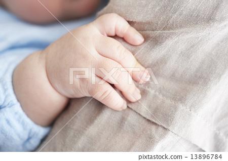 아기의 손 13896784