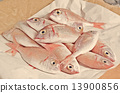Fresh fish  with red scales 13900856