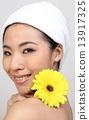 Beauty 13917325