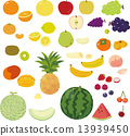 fruit, vectors, vector 13939450