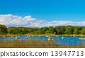 แหล่งน้ำ,สระน้ำ,ท้องฟ้าเป็นสีฟ้า 13947713