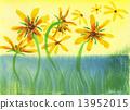 rudbeckia, watercolors, chrysanthemum 13952015