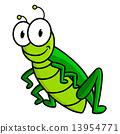 การ์ตูน,แมลง,ตั๊กแตน 13954771