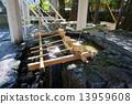 Saruhito Shrine 13959608