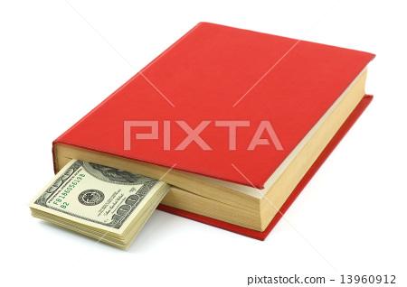 Money in book 13960912