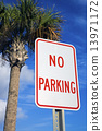 No parking under the palm 13971172