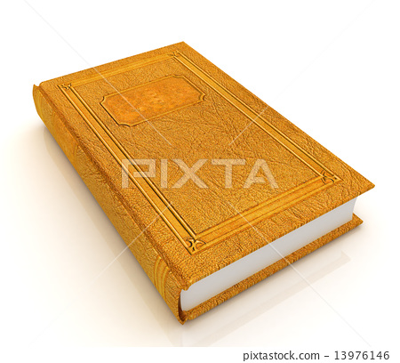The leather book 13976146