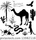 沙漠 动物 一组 13982116