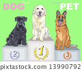 vector happy dog champion on the podium 13990792