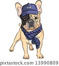 vector funny cartoon hipster dog  French Bulldog breed 13990809