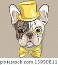 vector funny cartoon hipster French Bulldog dog 13990811
