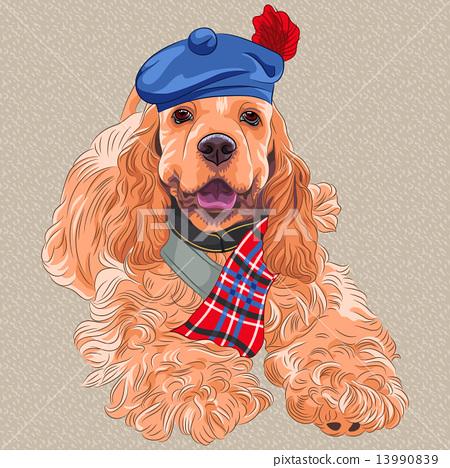 vector dog American Cocker Spaniel  in Scottish Tam 13990839