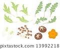 蔬菜 原料 食品 13992218