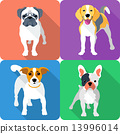 set dog icon flat design 13996014