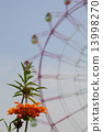 reonochisu, ferris, wheel 13998270
