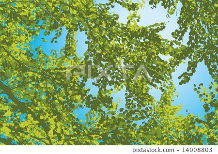 樹 14008803