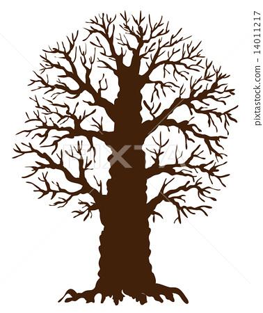 Oak tree 14011217