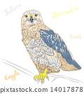 vector colorful bird Rough-legged Buzzard 14017878