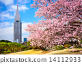 Tokyo Park in the Spring 14112933