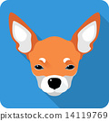 dog Chihuahua icon flat design  14119769