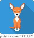 dog Chihuahua icon flat design  14119771