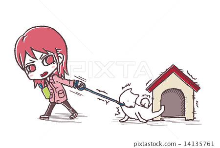 Dog refusing to walk 14135761