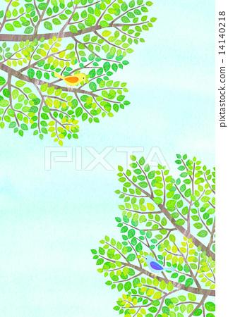 Fresh green and birds 14140218