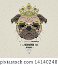 fashion portrait of pug girl princess 14140248