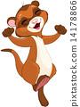 Ferret 14178866