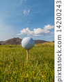 Golf Ball on Tee  14200243