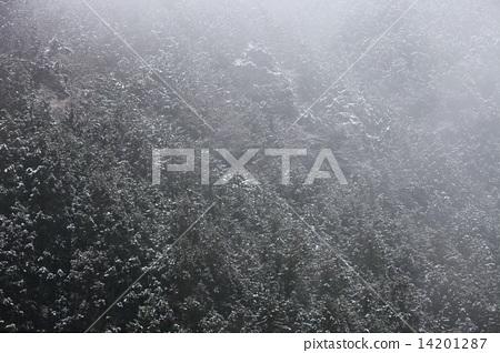 Snowy landscape 14201287